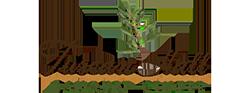 logo-250x93